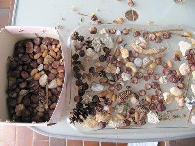 Naturmaterialien sammeln und als Material für Legebilder und Mandalas nützen.