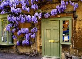 Cotswolds villages, most are impossibly pretty especially at wisteria time