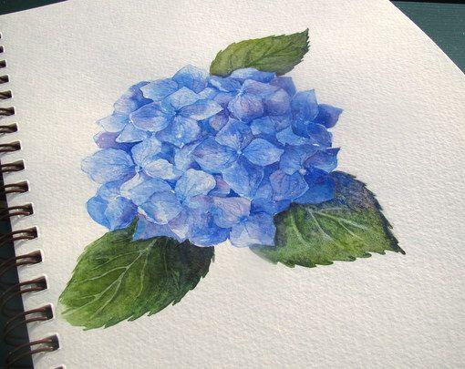 Paso a Paso de la acuarela: Cómo pintar un Hydrangea azul | Artista Diario | bloglovin '