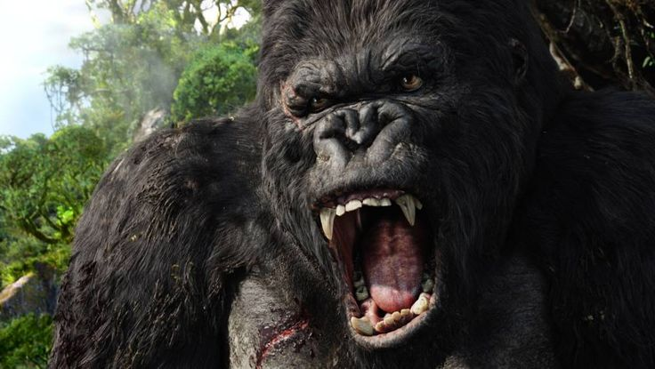 There's going to be a new King Kong movie Skull Island Nov 2016