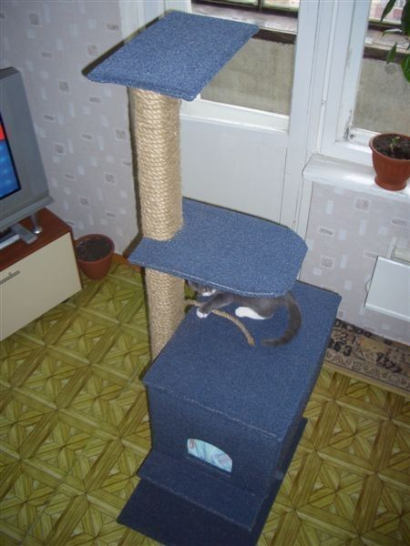 House for cats with their hands / Life Design