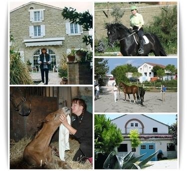 Successful stories of expats in Le Marche | A couple and Sant'Ippolito's horses in The Marches