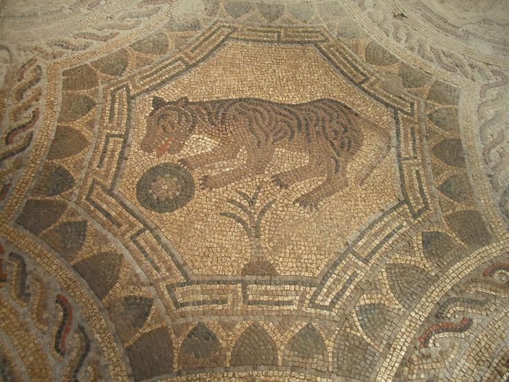 Un bellissimo mosaico della Villa Romana di Patti