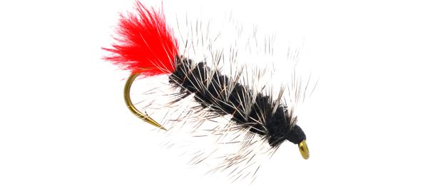 Woolly Worm for trout, bass, bluegill.