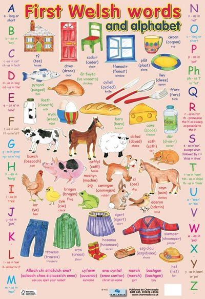 ~ first Welsh words poster for children ~