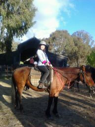 Enjoy horse riding lessons in a beautiful environment.