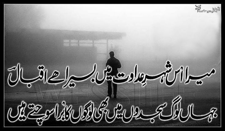 Shayri In English Google Search Quotes T English: 32 Best Allama Iqbal Images On Pinterest