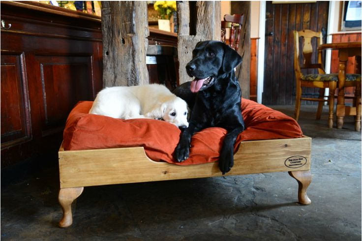 The Dog Bed Company - handmade luxury wooden dog beds west sussex ...