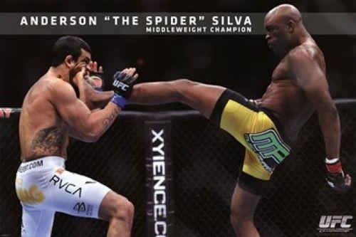 UFC - Anderson Silva Poster Print (36 x 24) - Item # PYRPAS0460 - Posterazzi