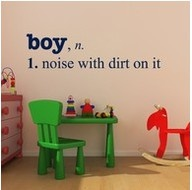 Lol this is 100% true!Vinyls Decals, Little Boys Room, Quote, Kids Room, Wall Decals, Baby Boys, So True, Playrooms, Boysroom