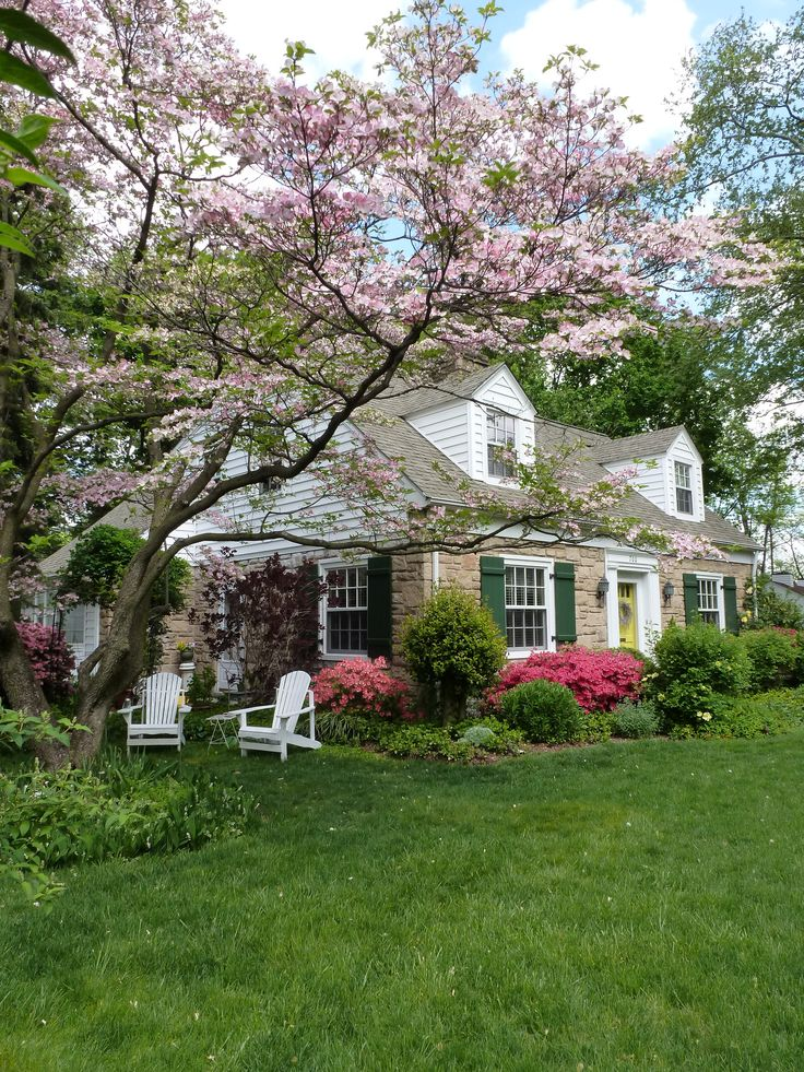 Cottage in Spring. My perfect home. Dormers, stone, green shutters, flowering tree.