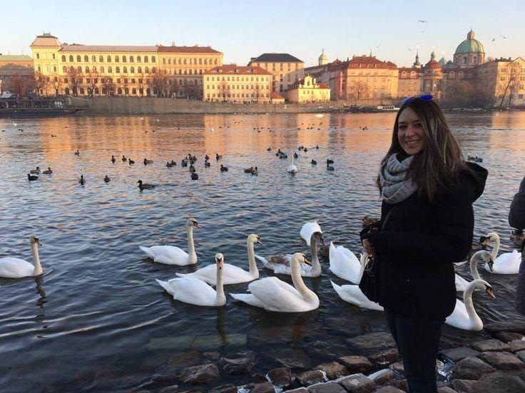 De ce să nu mergi o zi în Praga | Thoughts about nothing…