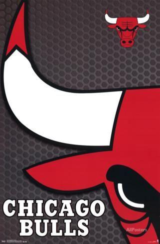 Chicago Bulls - Logo 14 Posters at AllPosters.com