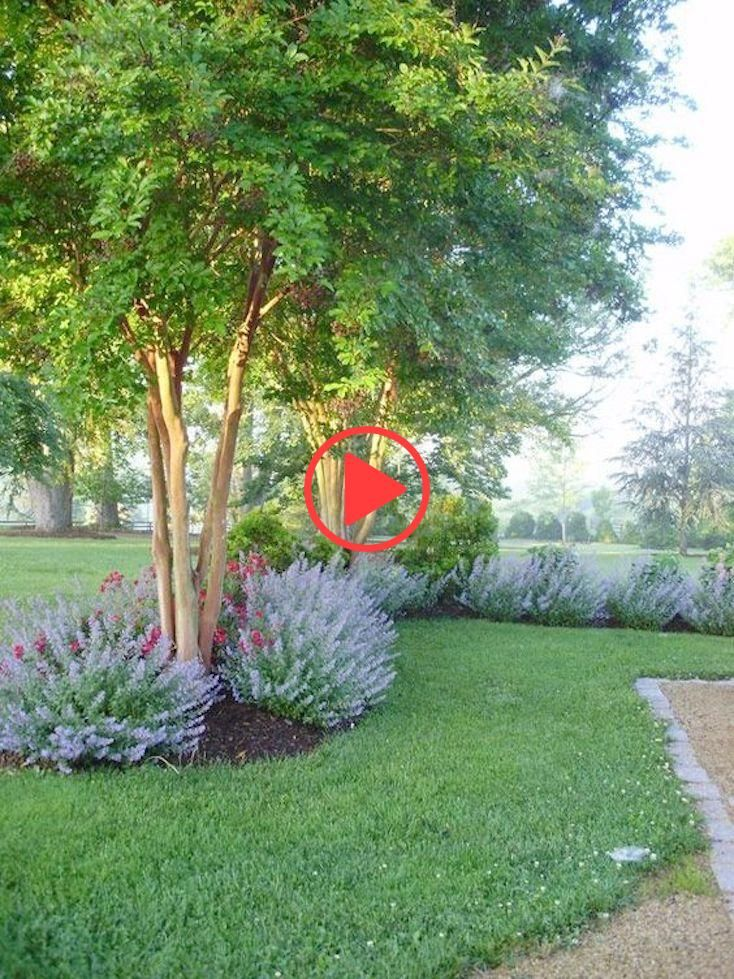 Creative Landscape Ideas With Big Impact Landscaping Along Fence