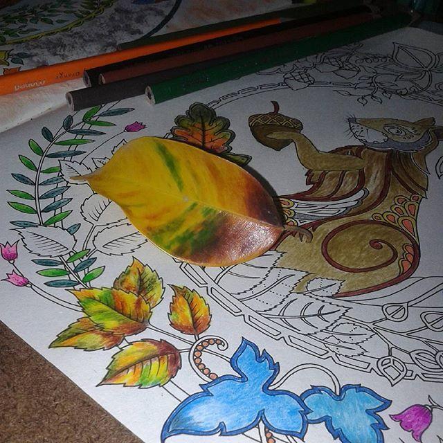 Instagram media colorindolivrostop - Boa ideia!! ......................................... O seu colorido é TOP? Use #colorindolivrostop ......................................... CONCURSO em andamento; #colorindoomundofashion ................................ SORTEIO em andamento em parceria com @unhasdonamoca Participe!