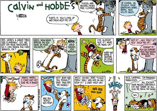 United Nations calvin comic hobbes kittel strip Family