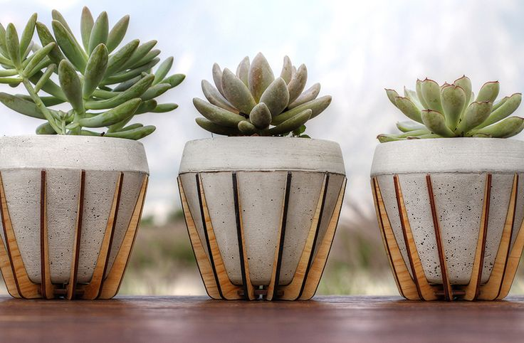 La Morena Plant Pots - laser cut wooden holders                                                                                                                                                                                 More