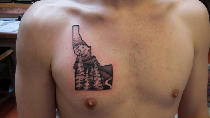 Realistic Idaho Tribute By Simon Gentry At Bitterroot