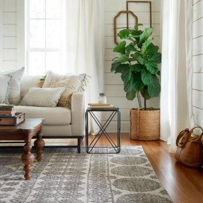 Design Job It Ties The Room Together Loloi Rugs Is Seeking A Full Time Graphic Designer In Dallas TX