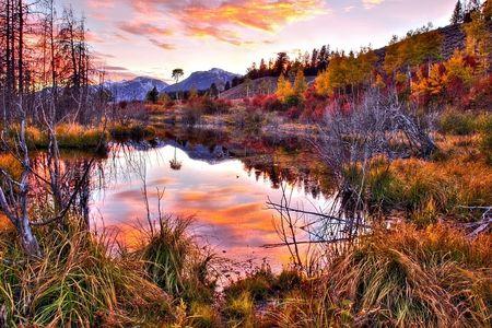 Little Lake At Autum