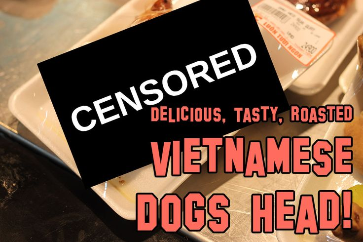 Eating Dog Head – Straight From The Supermarket!