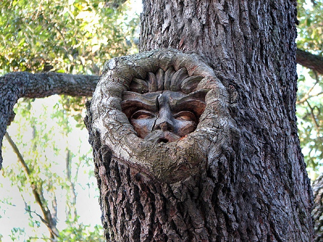 Tree Spirit    Located at Red Fern Village - St.Simons Island, GA. Featured in an issue of Elegant Island Living.