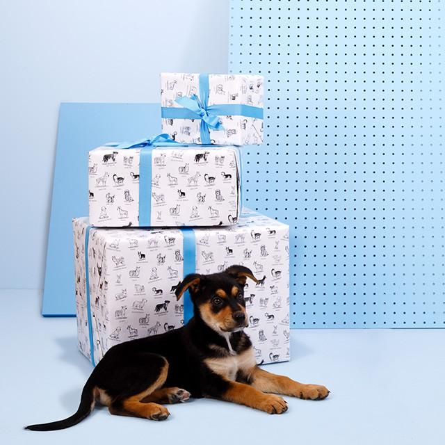 Dog Doodle Gift Wrapping Paper