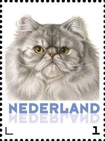 Stamp: Domestic Cat (Felis silvestris catus) (Netherlands - Personalized stamps) (Cats, Francine van Westering) Col:NL 2015-084