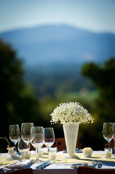 I really like this vase!  Baby's Breath Flower Ideas Wedding Flowers Photos on WeddingWire