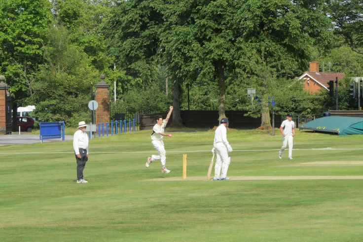 James Rogers bowling for Blue Coat at the T20 Festival