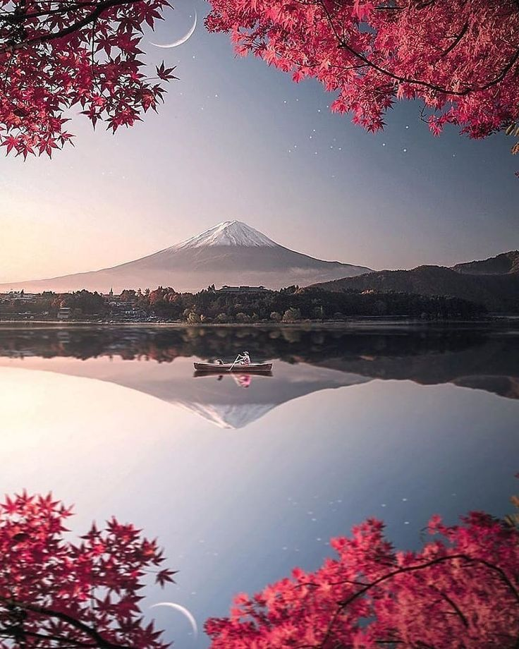 Mt.Fuji, Fujisan, Flower, Lake, 日本, 富士山