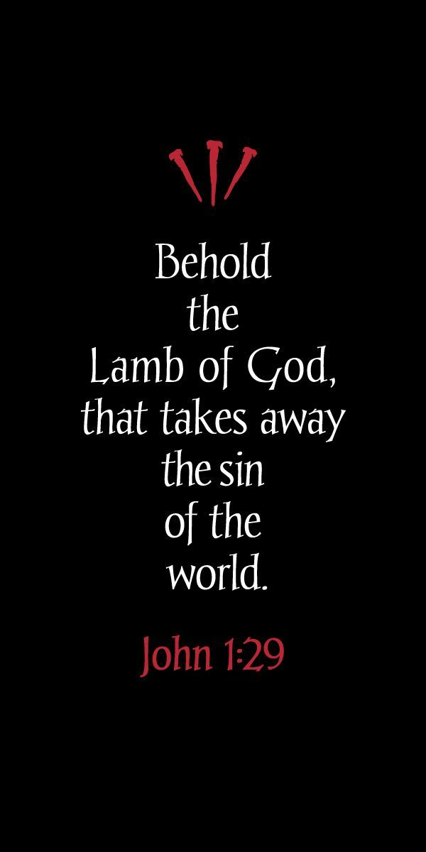 Behold, the Lamb of God who takes away the sins of the world. (John 1:29) These…