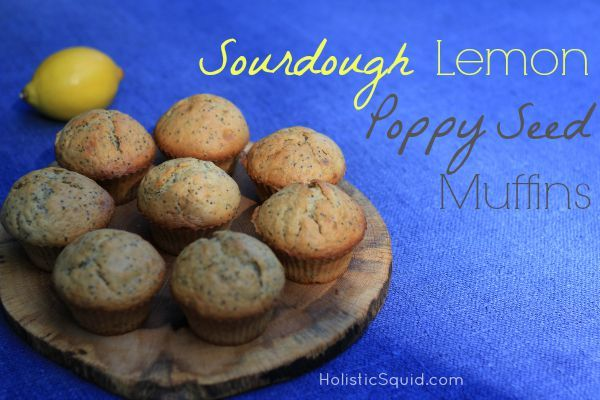 Sourdough Lemon Poppy Seed Muffins - Holistic Squid