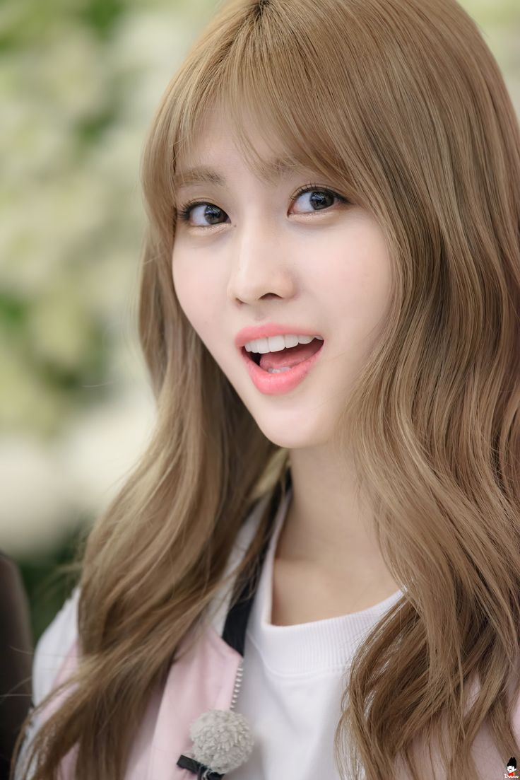 97 Best Images About Twice S Momo On Pinterest Names
