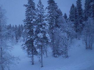 Finlandia - Kaamanen 4 | Flickr - Photo Sharing!