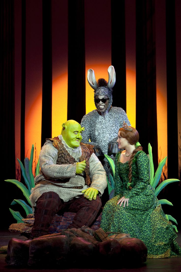 Shrek: The musical. If you watch it watch the one with sutton foster as Fiona it's the best and only one I will watch