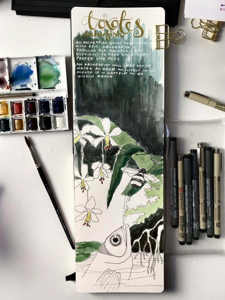 Just finished the excellent EXPLORING Kourse over at Sketchbook Skool, I had to set my own agenda. I am trying to get used to using watercolors. I like it when