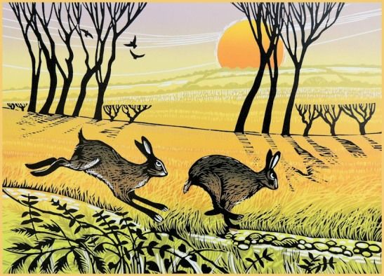Hare Chase