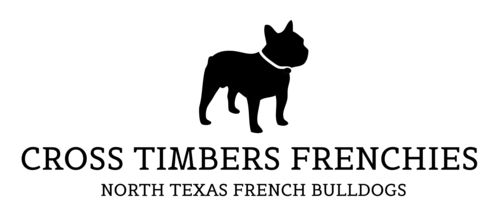 Latest Updates — Cross Timbers French Bulldogs