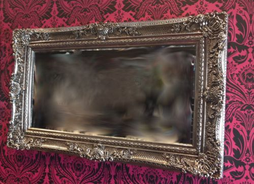 Silver Mirror Wall Photo Frame: NEW Large Ornat Gilt Antique Beveled Edge French Style