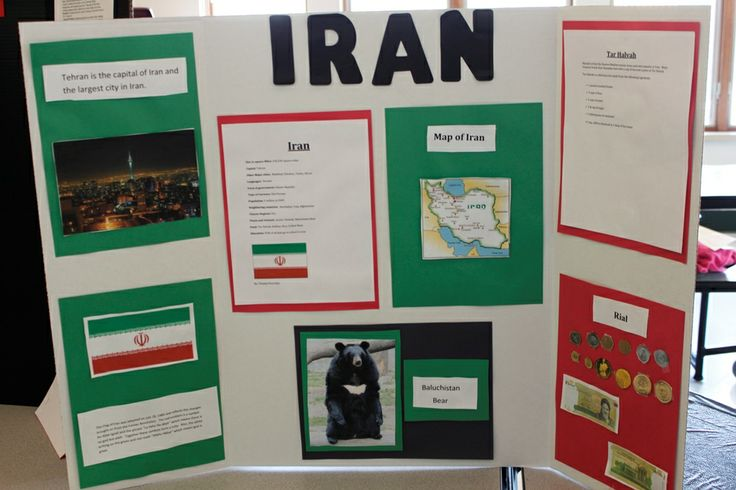 Best Trifold Images On Pinterest School Projects Project Ideas - Unique science fair tri fold ideas