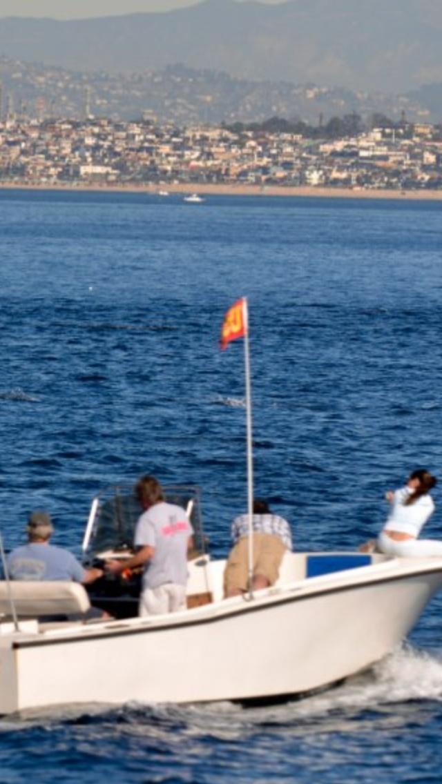 Harris Flotebote Pontoons Boat Dealers 3 | Free Boat Plans TOP
