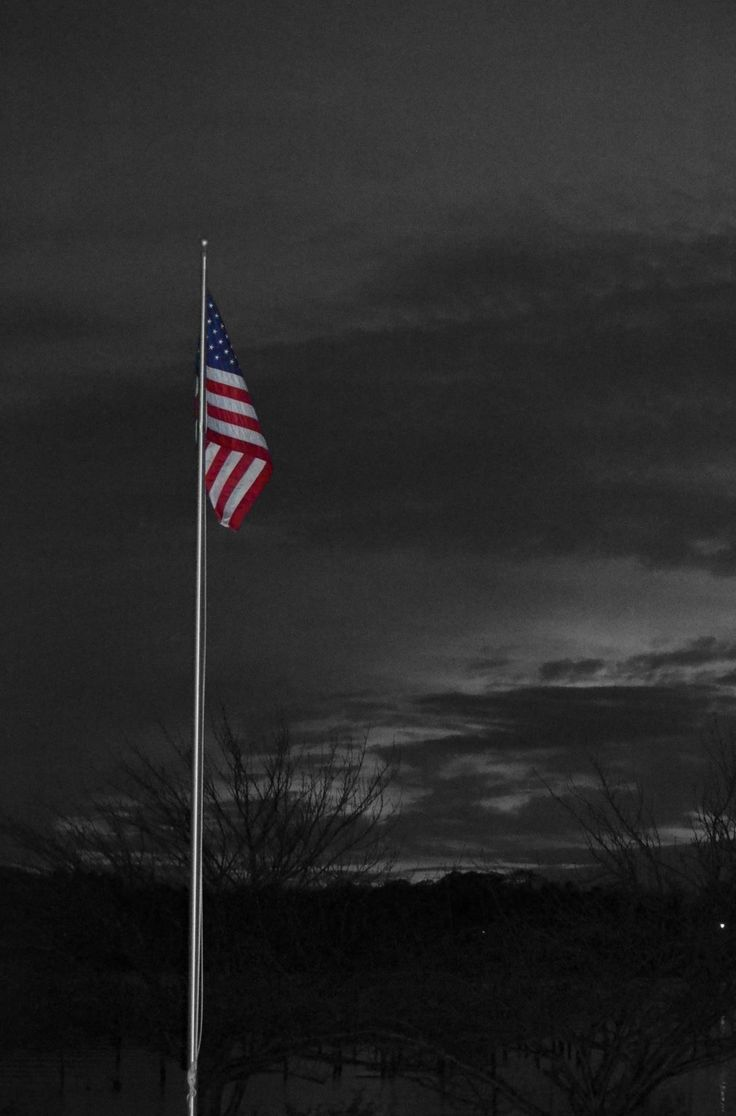 yard flag pole