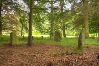 Pictish Standing Stones