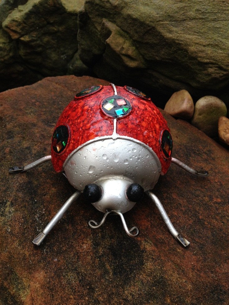 Jelly the ladybug