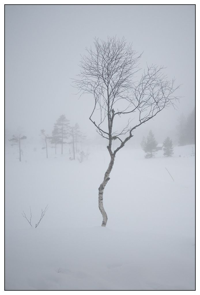 Toplandsheia, winter skiing