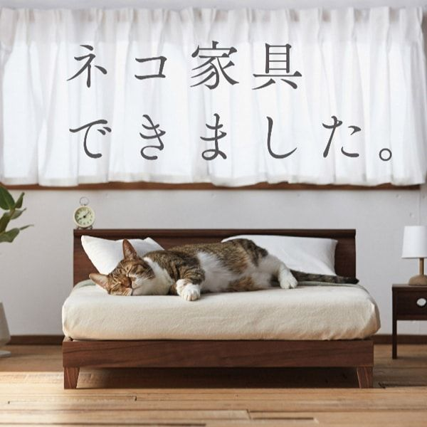 Japan Releases a Range of Miniature Furniture for Cats