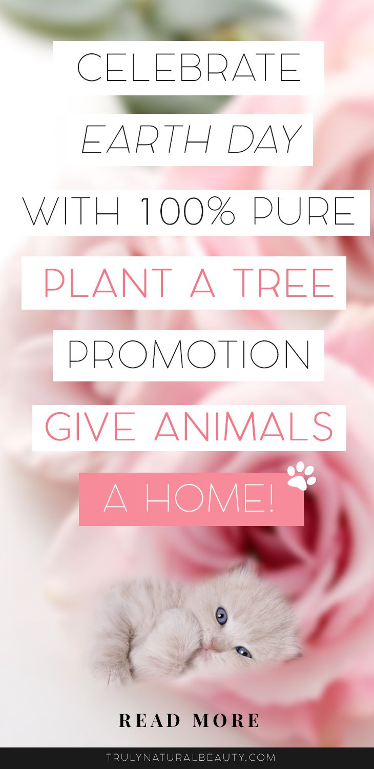 100% Pure, 100% Pure Promotion, earth day, 2017 earth day, april 22, give animals home, cruelyfree, how to help the planet, help the planet, how to help animals, organic makeup, organic skincare, the best natural skincare brands, healthy skincare, healthy makeup, natural makeup, green beauty, natural beauty, organic beauty blogger, natural beauty blogger, green beauty blogger, animals, earth, planet, green planet, nontoxic skincare, nontoxic makeup