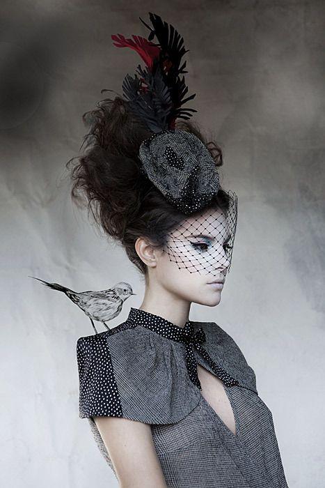 hat, veil, flower and bird