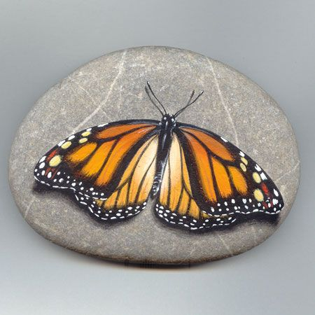Butterfly painted on stone, Roberto Izzo